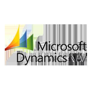 MS Dynamics People 300 copia